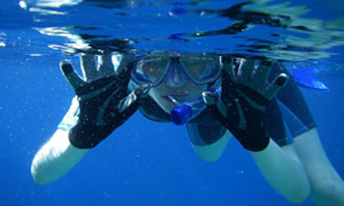 Snorkel-Dive-Tours-attraction